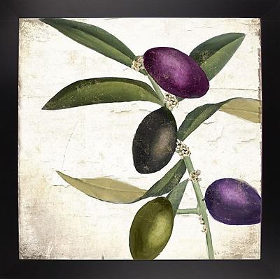 Charlton Home 'Olive Branch II' Graphic Art Print; Black Large Framed