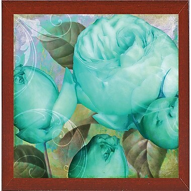 Ebern Designs 'Aqua Rose II' Graphic Art Print; Red Mahogany Medium Framed
