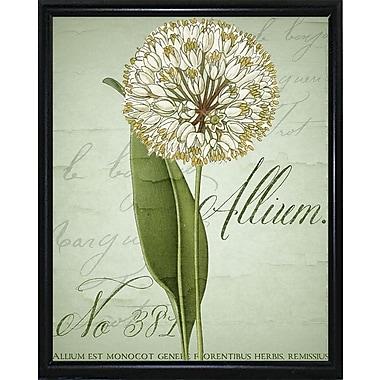 Ophelia & Co. 'Allium II' Graphic Art Print; Metal Flat Black Framed