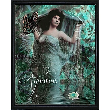 East Urban Home 'Art Nouveau Zodiac Aquarius' Graphic Art Print; Metal Flat Black Framed