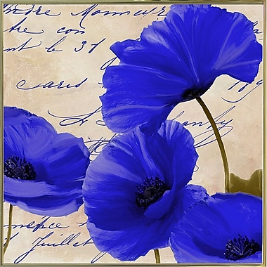 August Grove 'Coquelicots Bleues I' Graphic Art Print; Metal Gold Framed