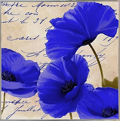 August Grove 'Coquelicots Bleues I' Graphic Art Print; Metal Silver Framed