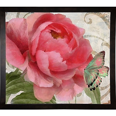 August Grove 'Apricot Peonies II' Graphic Art Print; Cafe Espresso Framed