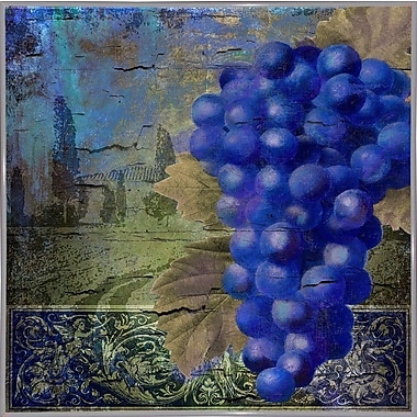 Fleur De Lis Living 'Vino Blu One' Graphic Art Print; Metal White Framed
