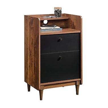 Ivy Bronx Gamma 2 Drawer Vertical Filing Cabinet
