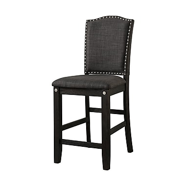 Loon Peak Ilana Dining Chair (Set of 2)