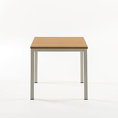 Varick Gallery Walser Square End Table; White