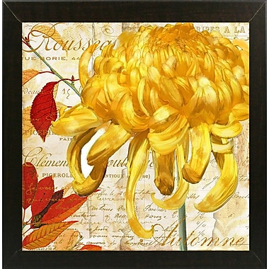 Winston Porter 'Chrysanthemes II' Graphic Art Print; Brazilian Walnut Medium Framed