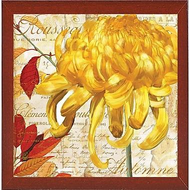 Winston Porter 'Chrysanthemes II' Graphic Art Print; Red Mahogany Medium Framed