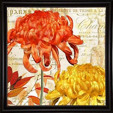 Winston Porter 'Chrysanthemes I' Graphic Art Print; Canvas Black Floater Framed