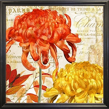 Winston Porter 'Chrysanthemes I' Graphic Art Print; Black Grande Framed