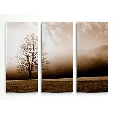 Alcott Hill 'Meadow Solace' Photographic Print Multi-Piece Image on Wrapped Canvas; 32'' H x 48'' W