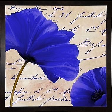 Winston Porter 'Coquelicots Bleues II' Graphic Art Print; Black Medium Framed