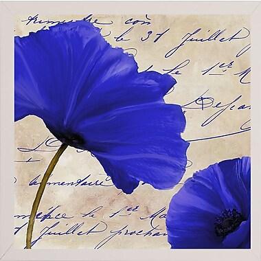 Winston Porter 'Coquelicots Bleues II' Graphic Art Print; White Medium Framed