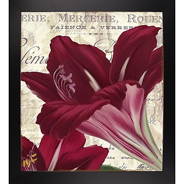 Winston Porter 'Amaryllis' Graphic Art Print; Black Large Framed