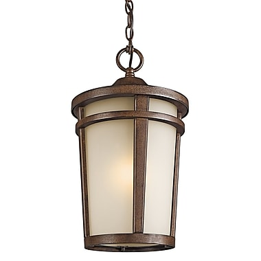 Darby Home Co Harvey 1-Light Outdoor Hanging Lantern; Incandescent