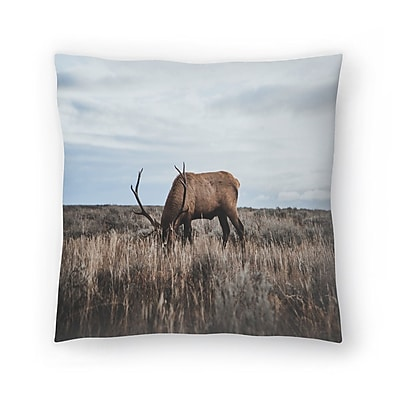 East Urban Home Luke Gram Wyoming USA Throw Pillow; 16'' x 16''