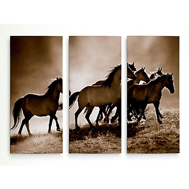 Loon Peak 'Wild Horses' Graphic Art Print Multi-Piece Image on Wrapped Canvas; 40'' H x 60'' W