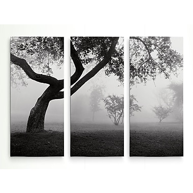 Red Barrel Studio 'Into the Mist' Photographic Print Multi-Piece Image on Wrapped Canvas