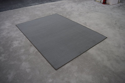 Williston Forge Elroy Gray Solid Area Rug; Rectangle 2' x 3'