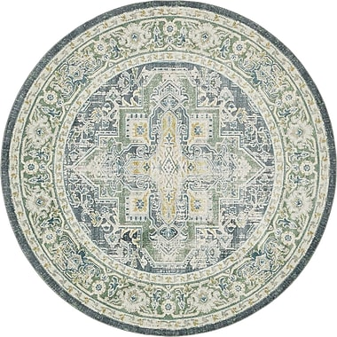 Bungalow Rose Lonerock Aqua Area Rug; Round 5'5''