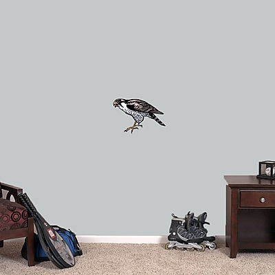 SweetumsWallDecals Falcon Wall Decal; 8'' H x 12'' W