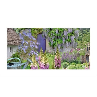 August Grove 'Cottage Garden' Photographic Print on Rolled Canvas; 22'' H x 40'' W