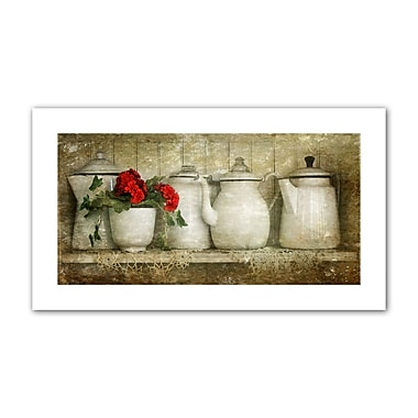 August Grove 'Flower w/ Pots' Photographic Print on Rolled Canvas; 16'' H x 28'' W