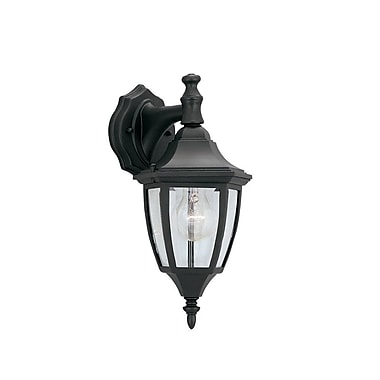 Charlton Home Slusser Traditional 1-Light Outdoor Wall Lantern; Black