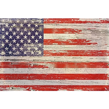 Loon Peak 'American Flag Distressed I' Painting Print on Wrapped Canvas
