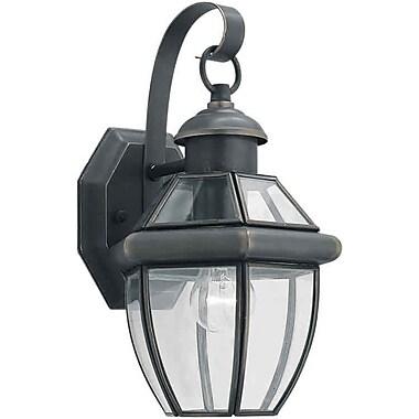 Alcott Hill Carlisle 1-Light Outdoor Wall Lantern; Royal Bronze