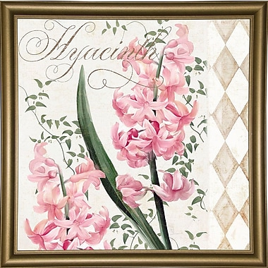 Ophelia & Co. 'Hyacinth' Graphic Art Print; Bistro Gold Framed Paper