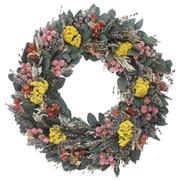 Alcott Hill Preserved 18'' Spring Wreath