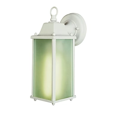 August Grove Miao 1-Light Outdoor Wall Lantern; White