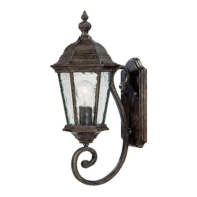 Darby Home Co Brook Lane 1-Light Outdoor Sconce; Black Coral