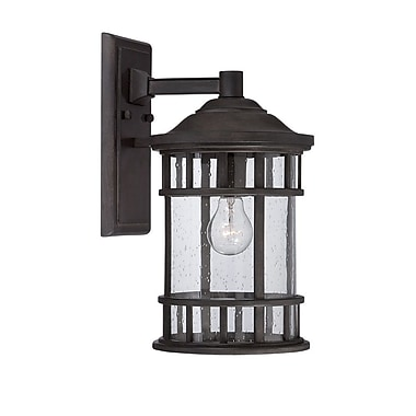 Darby Home Co Ferryhill Contemporary 1-Light Outdoor Wall Lantern; Black Coral