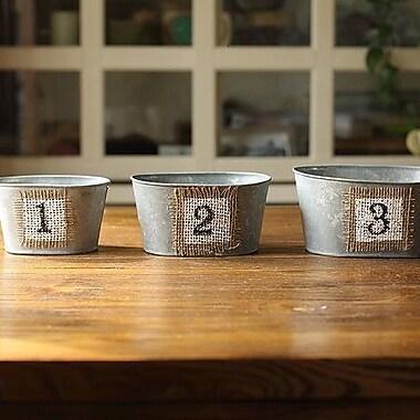 G Home Collection 3-Piece Planter Pot Planter Set