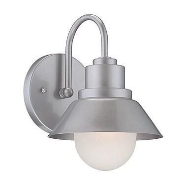 Ivy Bronx Boler 1-Light Outdoor Barn Light; Brushed Silver