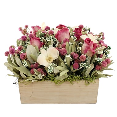 Ophelia & Co. Love is the Air Floral Arrangement in Planter
