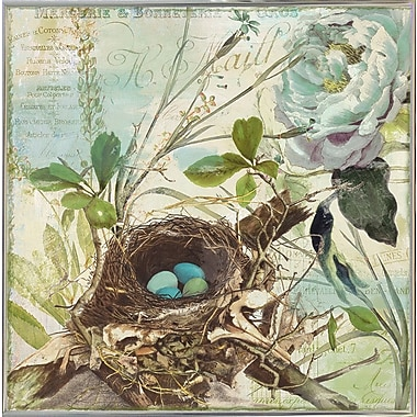 August Grove 'Nesting II' Graphic Art Print; Silver Metal Framed Paper