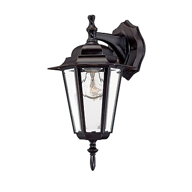 Charlton Home Stovall Contemporary 1-Light Outdoor Wall Lantern; Architectural Bronze