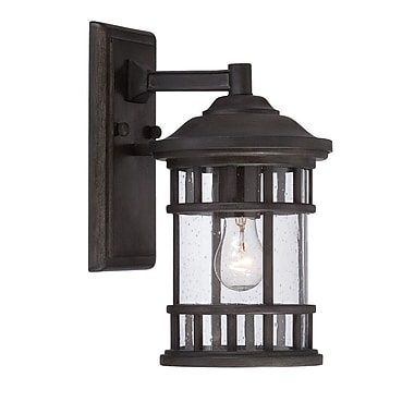 Darby Home Co Ferryhill 1-Light Outdoor Wall Lantern; Black Coral
