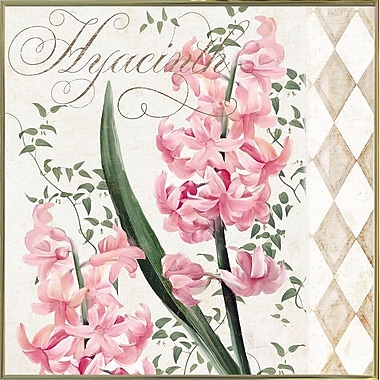 Ophelia & Co. 'Hyacinth' Graphic Art Print; Gold Metal Framed Paper
