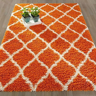 Varick Gallery Radford Soft Orange Shaggy Area Rug; 3'3'' x 4'7''