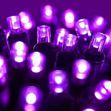 The Holiday Aisle 70 LED Christmas Light String; Purple Light/Black Wire