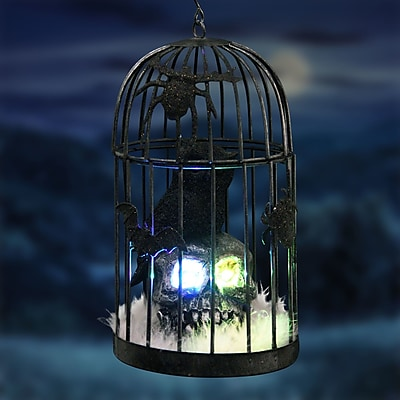 The Holiday Aisle Caged Owl on Skull Figurine w/ Color Changing LED's and Timer WYF078282125954