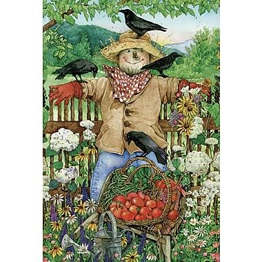 Toland Home Garden Friendly Scarecrow Garden Flag