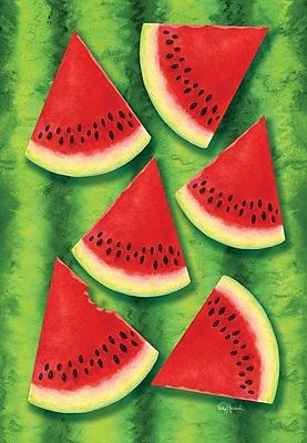 Toland Home Garden Watermelon Chill 2-Sided Garden Flag