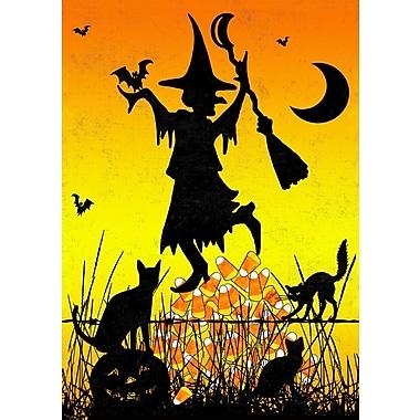 Toland Home Garden Candycorn Witch Garden Flag