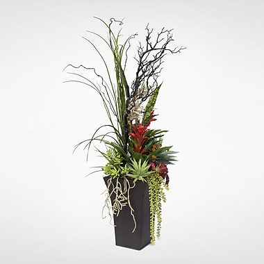 Bloomsbury Market Contemporary Floor Succulents Arrangement Plant in Planter